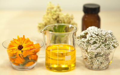 The Struggle Against Pharmaceutical Industry & The CBD Oil Industry